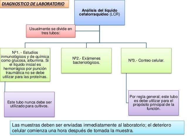 Análisis del líquido cefalorraquídeo (LCR) Nº1. - Estudios inmunológicos y de química como glucosa, albumina. Si el líquid...