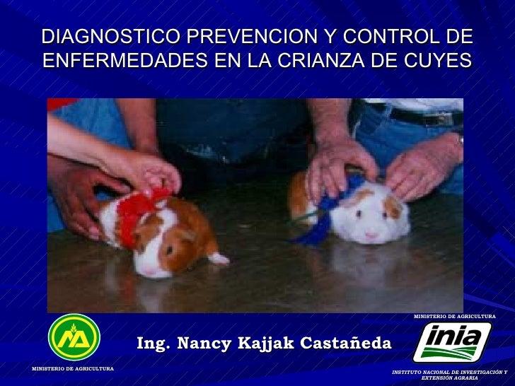 DIAGNOSTICO PREVENCION Y CONTROL DE  ENFERMEDADES EN LA CRIANZA DE CUYES                                                  ...