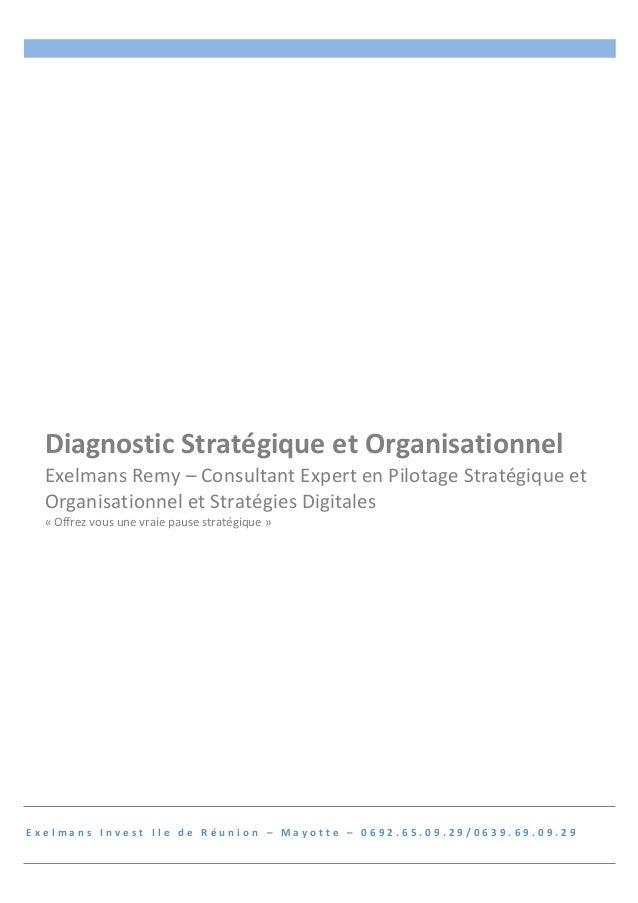 Diagnostic  Stratégique  et  Organisationnel  Exelmans  Remy  –  Consultant  Expert  en  Pilotage  Stratégique  et  Organi...