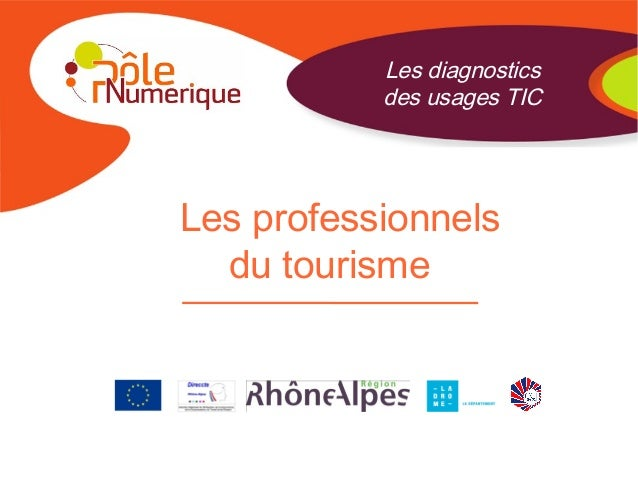 Les professionnels du tourisme Les diagnostics des usages TIC