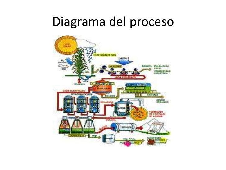 Diagrama del proceso<br />