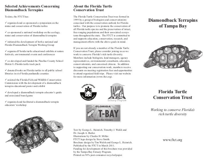 Selected Achievements Concerning                            About the Florida TurtleDiamondback Terrapins                 ...