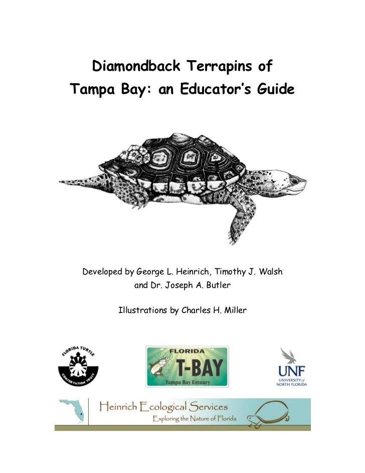 Diamondback terrapin educator's_guide_(final)