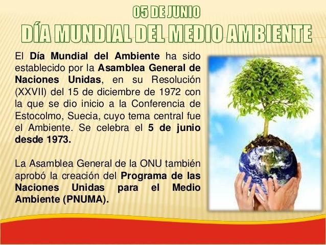 05 junio d a mundial del medio ambiente for Dia del arbol 01 de septiembre