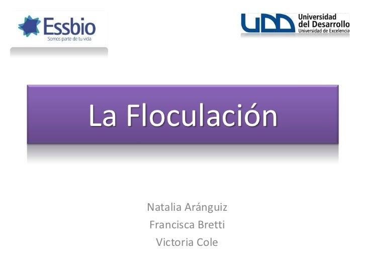 La Floculación<br />Natalia Aránguiz<br />Francisca Bretti<br />Victoria Cole<br />