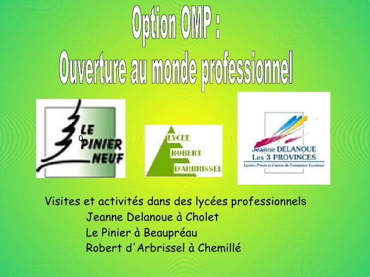 0 Visites et activités dans des lycées professionnel s <ul><li>Jeanne Delanoue à Cholet