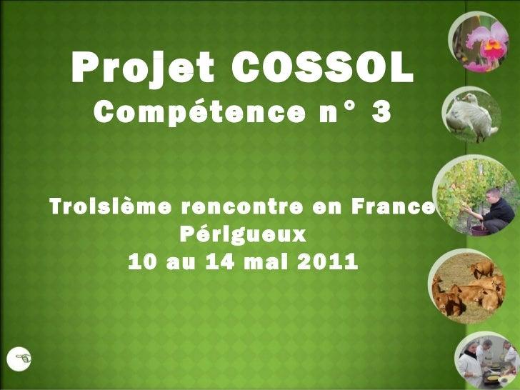Projet COSSOL Compétence n° 3 Troisième rencontre en France Périgueux 10 au 14 mai 2011