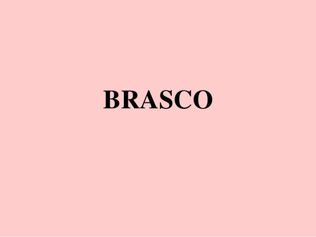 Diaporama de présentation de BRASCO élaboré par Richard SORBET