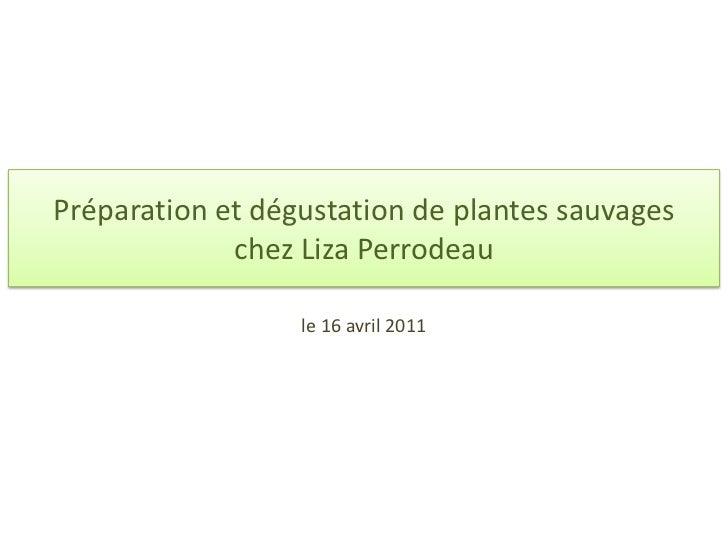 Préparation et dégustation de plantes sauvages chez Liza Perrodeau<br />le 16 avril 2011<br />