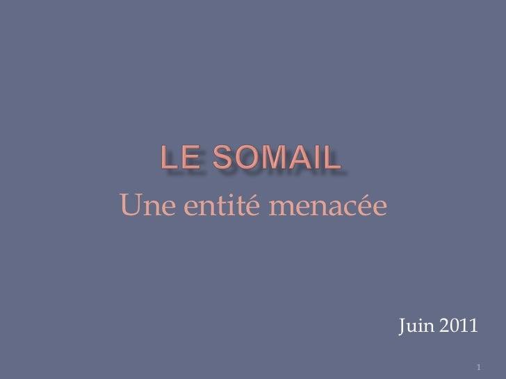 Le Somail<br />Une entité menacée<br />Juin 2011<br />1<br />