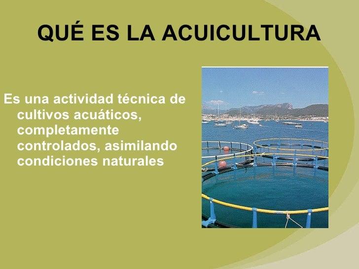 Qu es acuicultura y qu beneficios y aportes hace a la for Que es la asociacion de cultivos