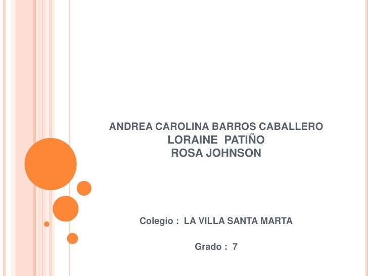 ANDREA CAROLINA BARROS CABALLEROLORAINE  PATIÑOROSA JOHNSON<br />Colegio :  LA VILLA SANTA MARTA<br />Grado :  7 <br />