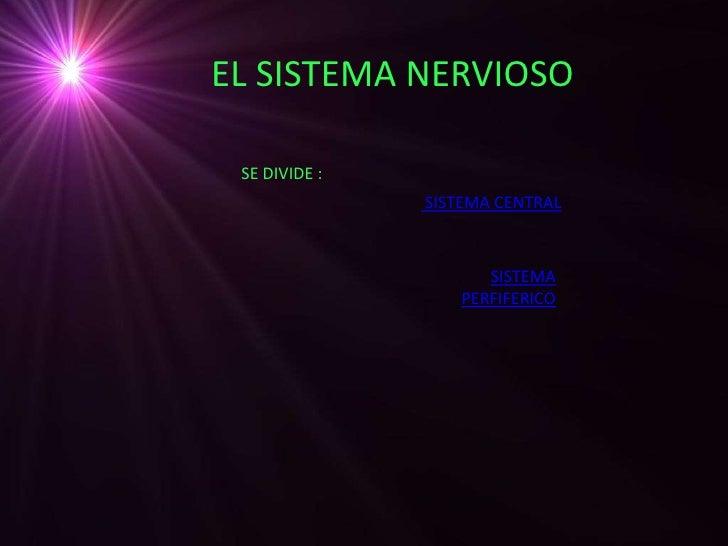 EL SISTEMA NERVIOSO SE DIVIDE :               SISTEMA CENTRAL                      SISTEMA                   PERFIFERICO