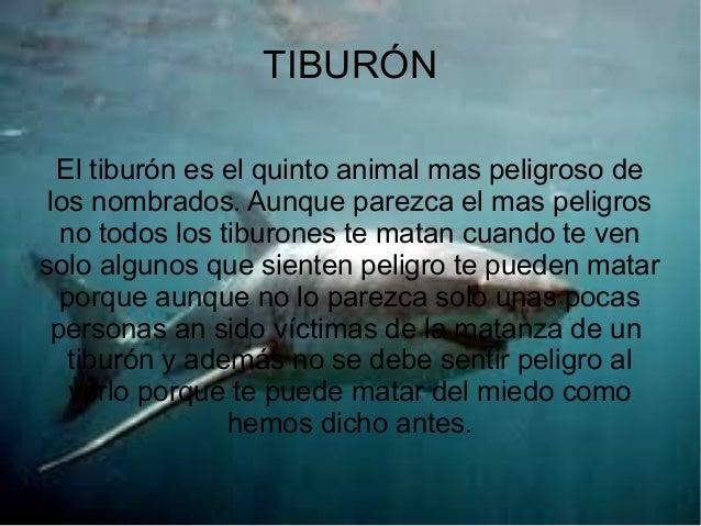 TIBURÓN El tiburón es el quinto animal mas peligroso de los nombrados. Aunque parezca el mas peligros no todos los tiburon...