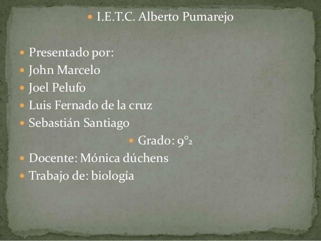 I.E.T.C. Alberto Pumarejo  Presentado por:  John Marcelo  Joel Pelufo  Luis Fernado de la cruz  Sebastián Santiago ...