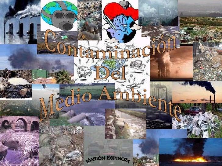 Contaminacion Ambiental (3)