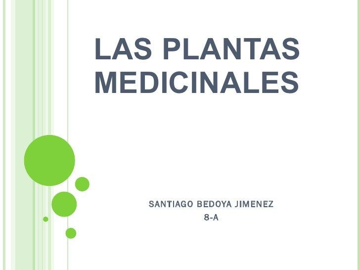 LAS PLANTAS MEDICINALES SANTIAGO BEDOYA JIMENEZ 8-A