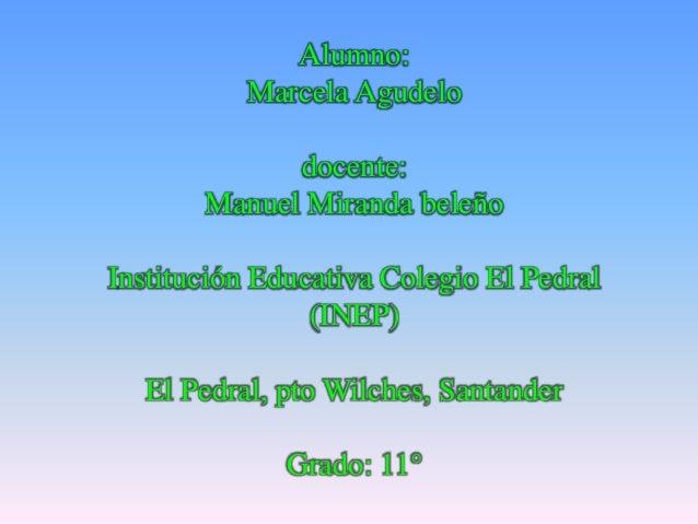 Alumno: Marcela Agudelo docente: Manuel Miranda beleño Institución Educativa Colegio El Pedral (INEP) El Pedral, pto Wilch...