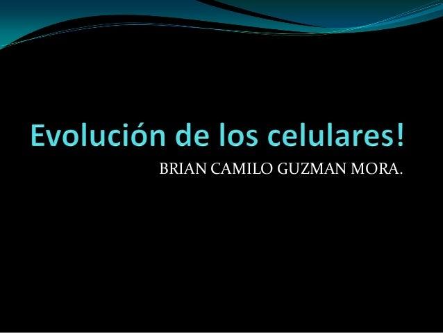 BRIAN CAMILO GUZMAN MORA.