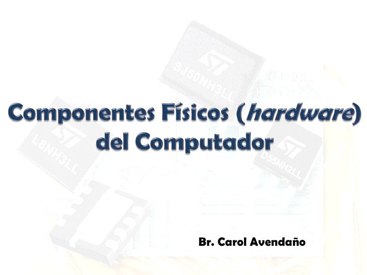 Br. Carol Avendaño