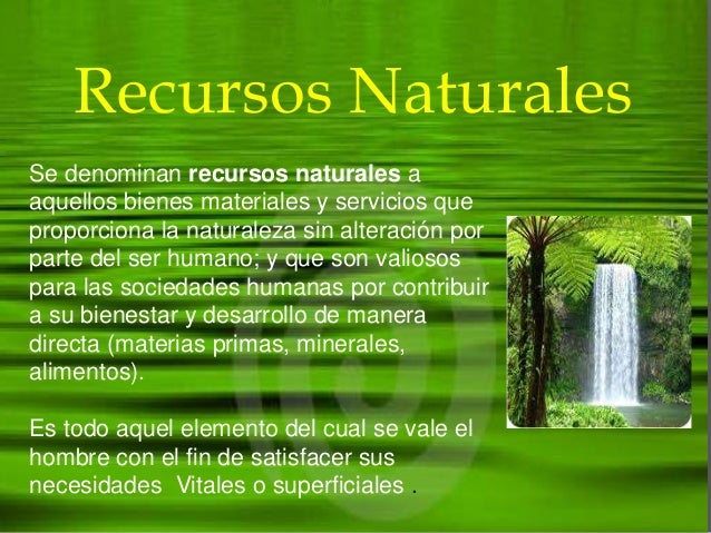 Recursos naturales - Ambientadores naturales para la casa ...