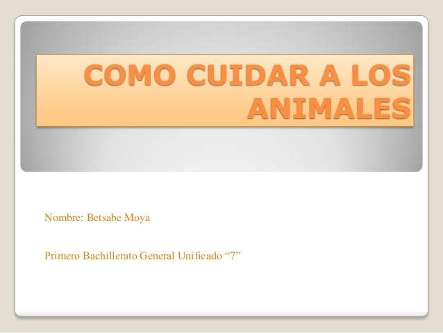 """COMO CUIDAR A LOS ANIMALES Nombre: Betsabe Moya Primero Bachillerato General Unificado """"7"""""""