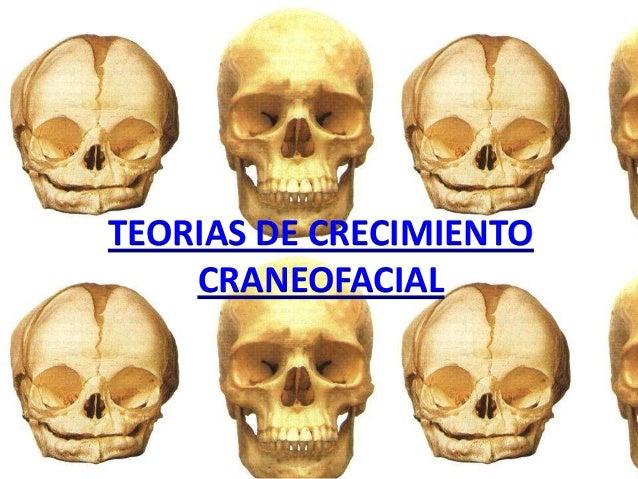 TEORIAS DE CRECIMIENTOCRANEOFACIAL