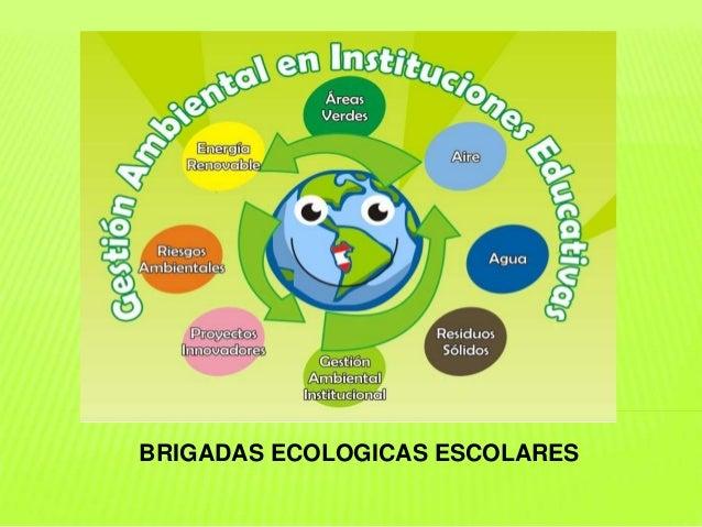 BRIGADAS ECOLOGICAS ESCOLARES