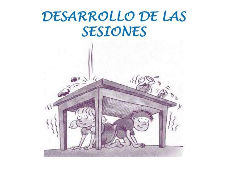 DESARROLLO DE LAS    SESIONES