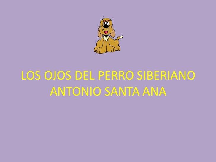 LOS OJOS DEL PERRO SIBERIANO ANTONIO SANTA ANA<br />