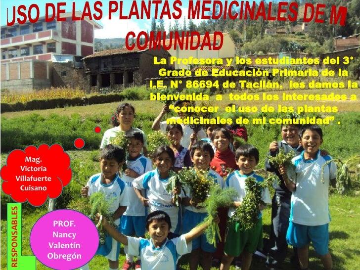 Diapositivas de plantas medicinales