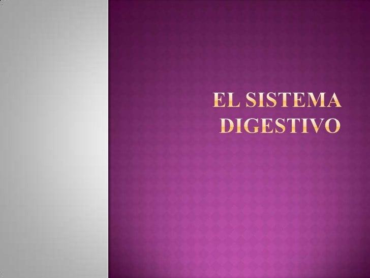 EL SISTEMA DIGESTIVO<br />