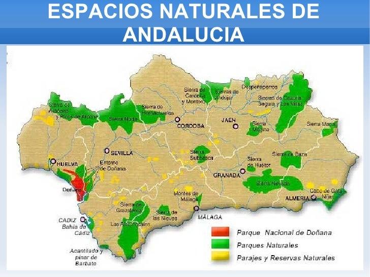 ESPACIOS NATURALES DE ANDALUCIA