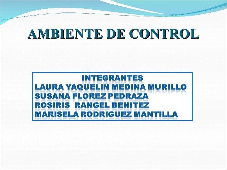 Diapositivas finales auditoria ambiente de control