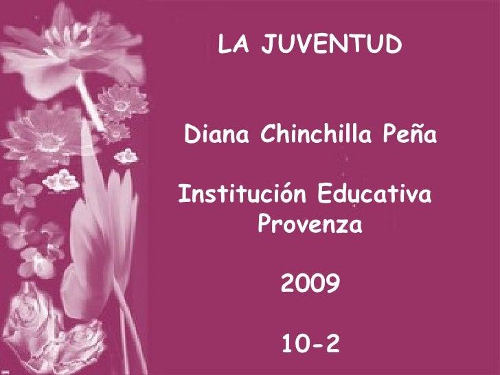LA JUVENTUD Diana Chinchilla Peña Institución Educativa  Provenza 2009 10-2
