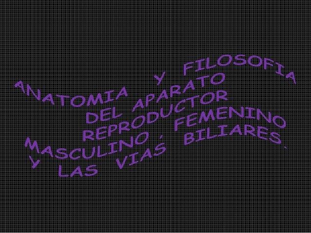 CONTENIDOINTRODUCCIONAPARATO REPRODUCTORMASCULINOAPARATO REPRODUCTOR FEMENINOLA MESTRUACIONEL HIGADO