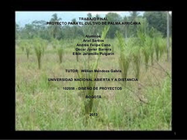 Diapositivas palma africana