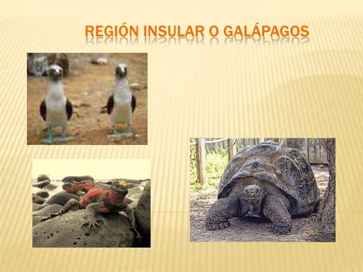 REGIÓN INSULAR O GALÁPAGOS