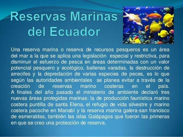 Una reserva marina o reserva de recursos pesqueros es un áreadel mar a la que se aplica una legislación especial y restric...