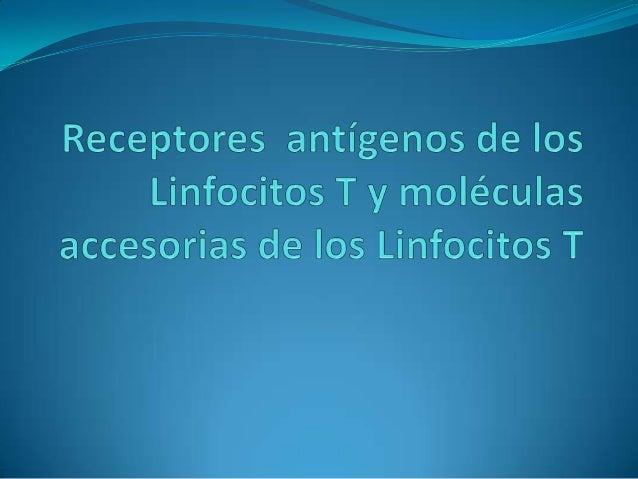 Diapositivas revision de inmunología