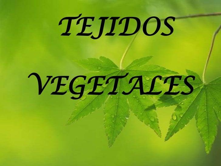 TEJIDOS<br />   VEGETALES<br />