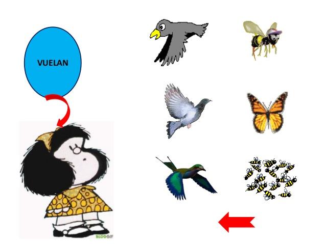 Nombres de animales que vuelan - Imagui
