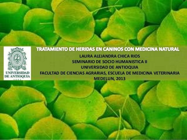 LAURA ALEJANDRA CHICA RIOS               SEMINARIO DE SOCIO HUMANISTICA II                   UNIVERSIDAD DE ANTIOQUIAFACUL...