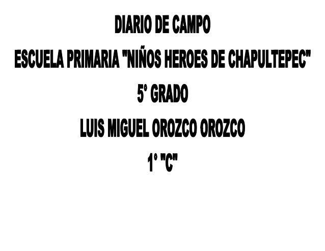Diario de campo luis m.