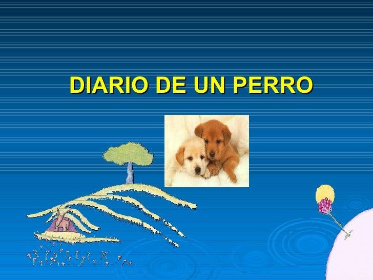 Diariodeunperro