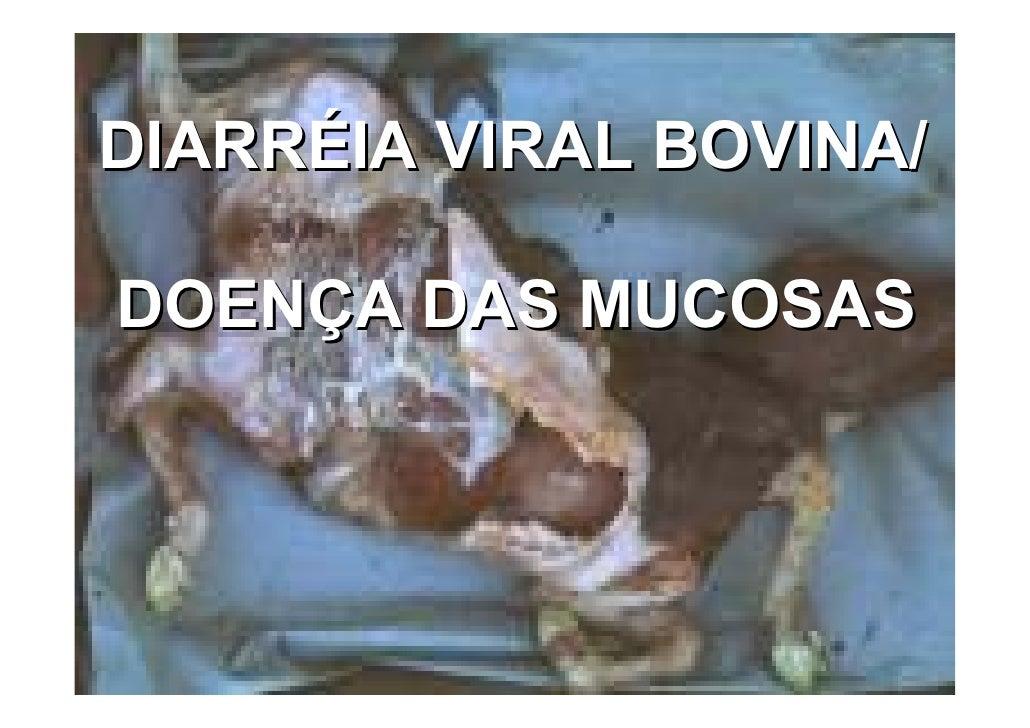 Diarreia Viral Bovina