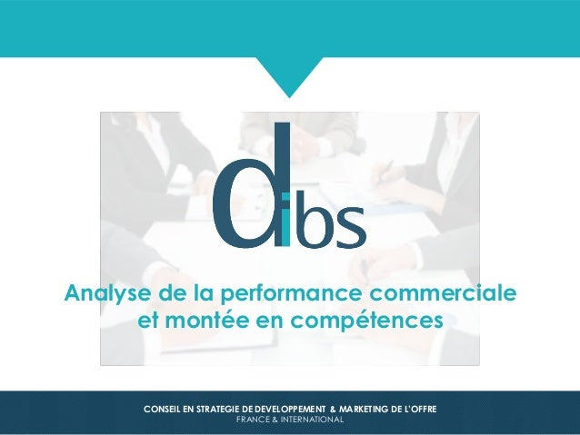 © Dibs I Confidentiel 1 CONSEIL EN STRATEGIE DE DEVELOPPEMENT & MARKETING DE L'OFFRE FRANCE & INTERNATIONAL Analyse de la ...