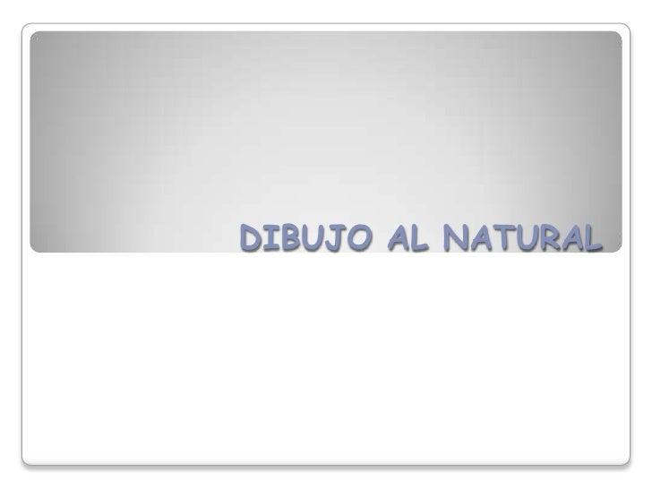Dibujo al natural