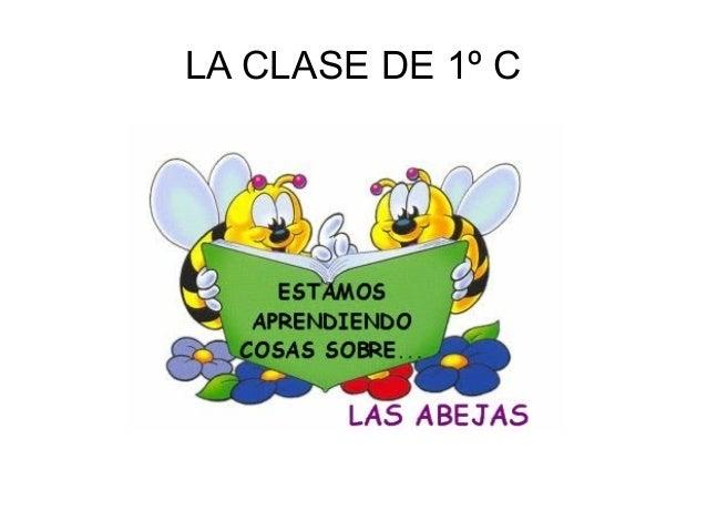 LA CLASE DE 1º C