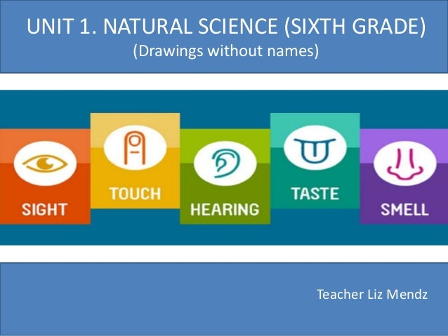 Accounting: Graded Unit 2 F8KF 35 PowerPoint Presentation, PPT - DocSlides
